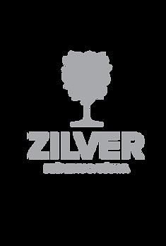 PNG ZILVER.png