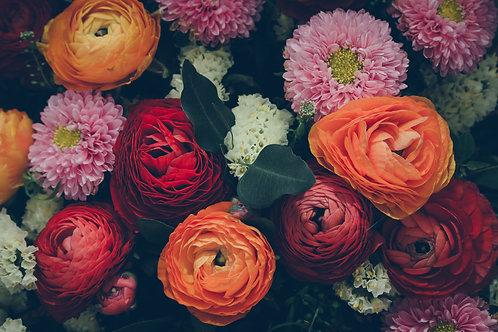 Charming Bloom