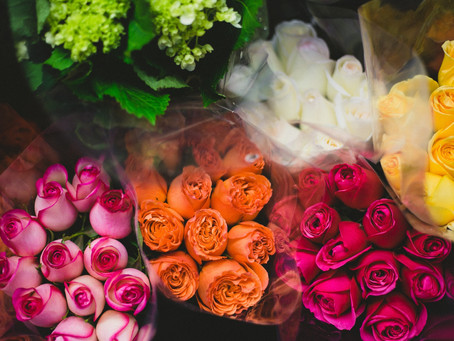 Fun Facts About Roses