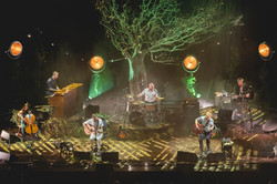Royal Albert Hall - Andy Paradise ©