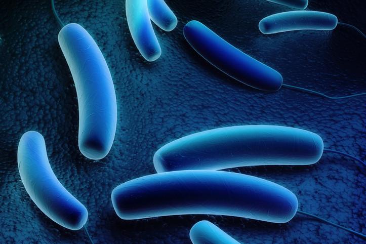 Legionella Management | Legionella Risk Assessments | Written Scheme | Training | Sampling