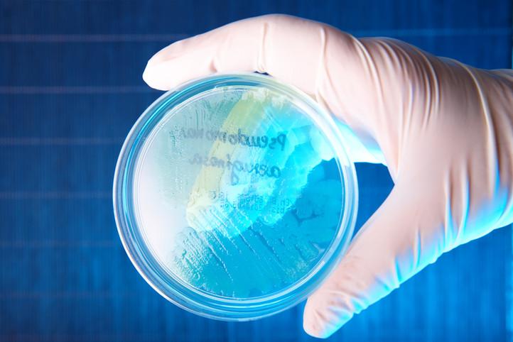 Water Quality | Legionella | Pseudomonas Aeruginosa