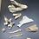 Thumbnail: Box No.54 - Bones