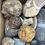 Thumbnail: Box No.50 - Chalk nodes and stones