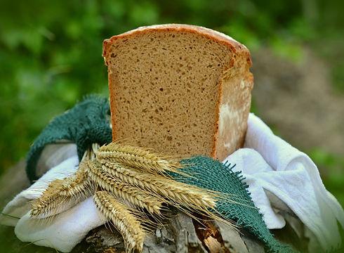 barley-1528172_1920.jpg