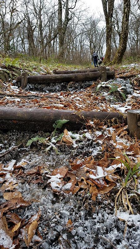 霜柱の大万木山登山道