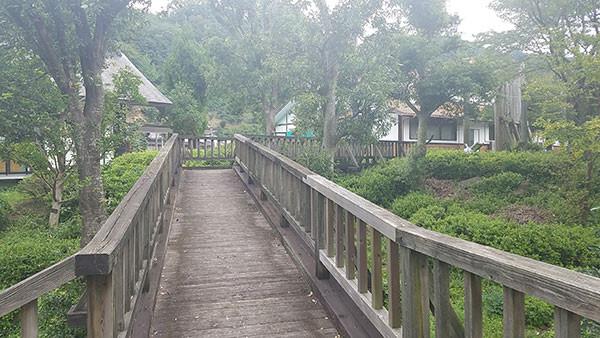 公園内の木製の通路