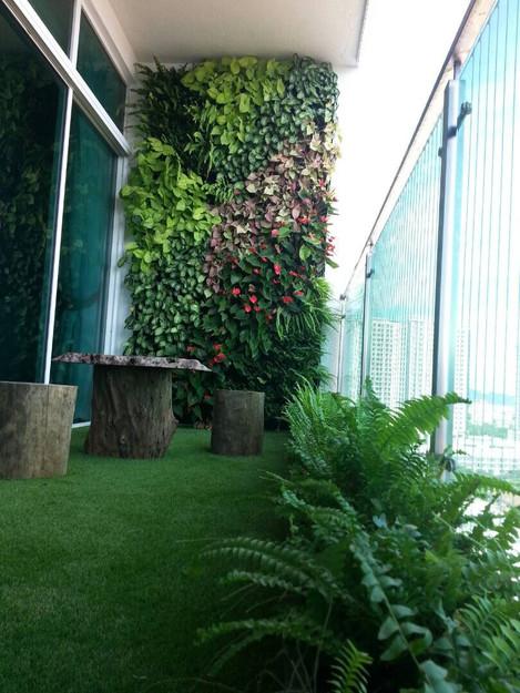 Greening Olive Tree Balcony With VERTILIVIN Greenwall