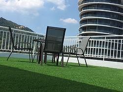 Premier Grass
