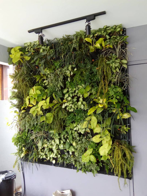 Wall Decor with VERTILIVIN Greenwall.