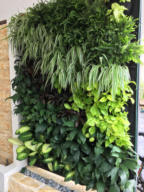 VERTILIVIN Greenwall System as car porch divider