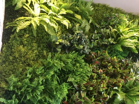 VertiGreen Indoor Greenwall System