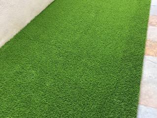 Backyard concrete floor greening with Uspine30 Premier Grass.
