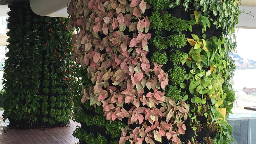 8 Gurney - Cylindrical Pillar Greenwall