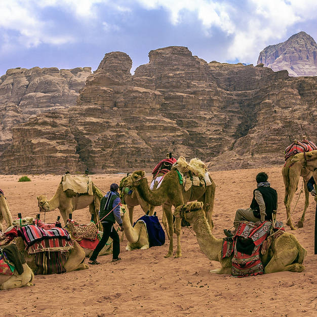 MEN WITH CAMELS