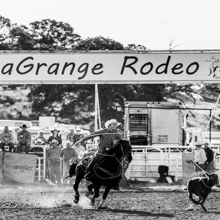 HOME RODEO