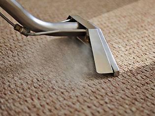 ColorTex Professional Carpet Cleaning Greeneville TN