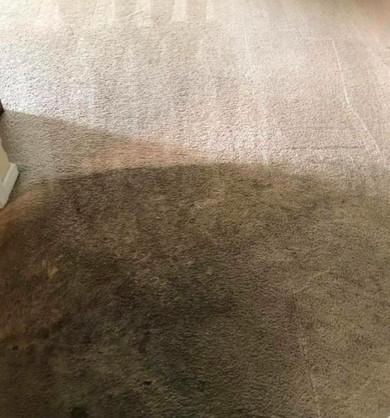 Heavily Soiled Carpet