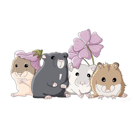 Hamster group portrait