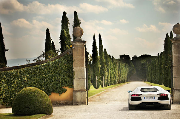 Lamborghini-Aventador-Whitecomp.jpg
