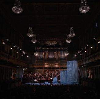 Musikverein reveal