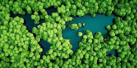 Skogsbad, Göteborg, Sense in Nature