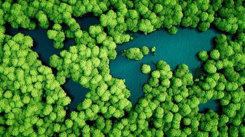 Environment Commitment