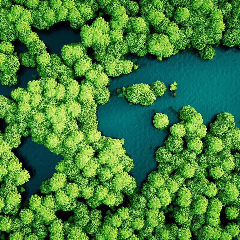 Noções de Legislação e Defesa Ambiental