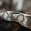 Thumbnail: Rooney蕾絲高跟婚鞋・RS170113(Ivory)