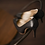 Thumbnail: Halle魅力高跟鞋・RS150213(Black)