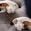 Thumbnail: 浪漫輕紗閃蕊花飾・IA171217 (Ivory)