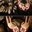 Thumbnail: 馬諾洛鑲鑽綢緞鞋飾(薔薇紅)・IA141120(Red)