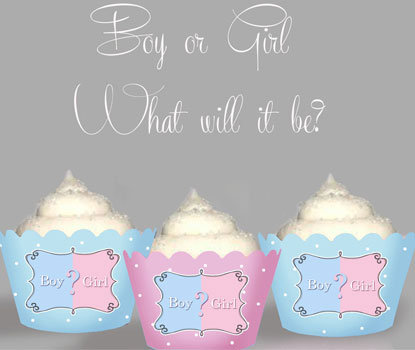 Baby Which Will it Be Wraps