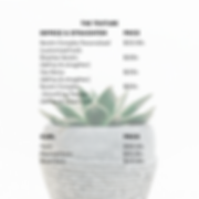Salon Price List PNG (The Texture).png