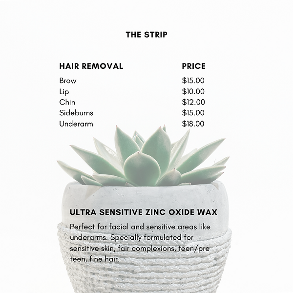 Salon Price List PNG (The Strip).png