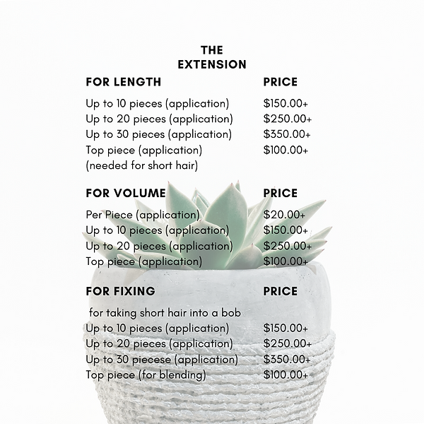Salon Price List PNG (The Extension:pg1)