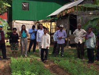 農業支援プロジェクトinシェムリアップ&バッタンバン (2017.11)