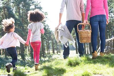 family-hike-picnic-summer.jpeg