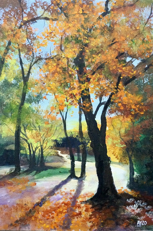 Autumn Woodland by Anthony Young