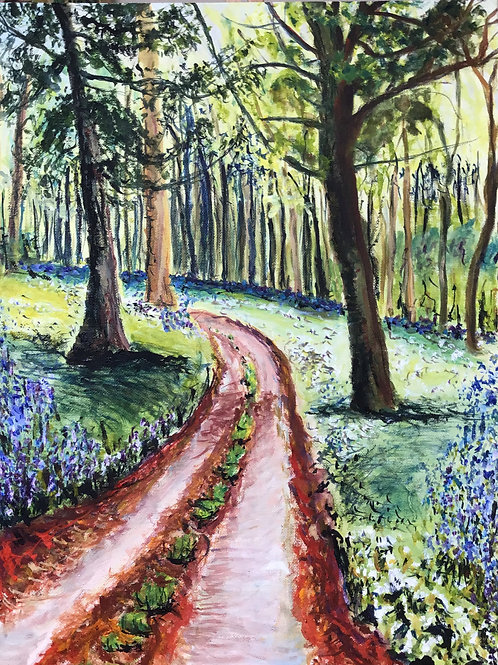 Path into Bluebell Woods by Chris Ashworth