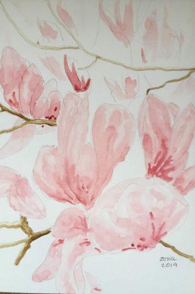 Magnolia by Zosia Mellor