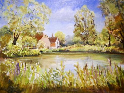 The Secret Pond by Tim Keeler