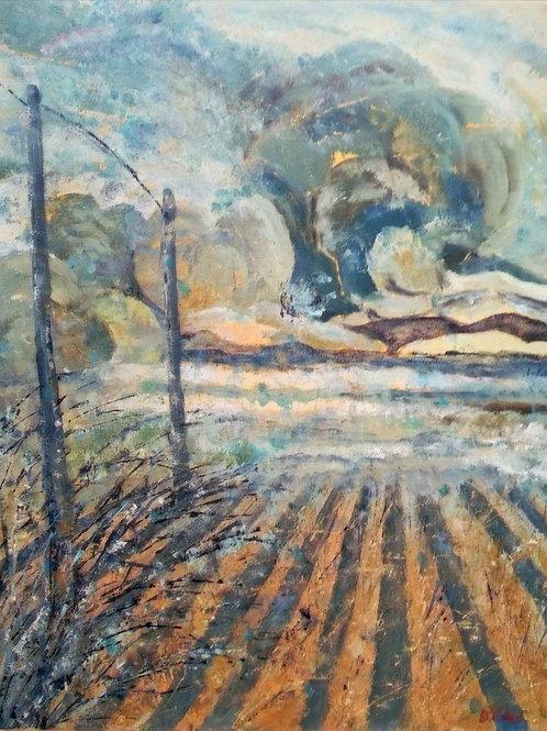 Storm Approaching by Deirdre Ellis