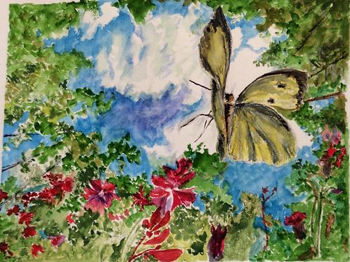Head for the Sky by Gillian Radbourne