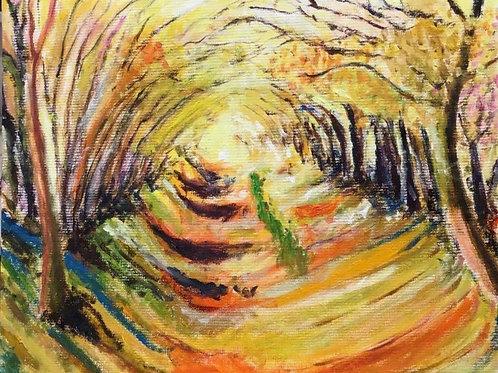 Autumnal Tunnel Walk by Chris Ashworth