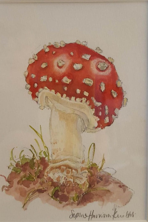 Fly Agaric by Sophie Harrison-Knibbs