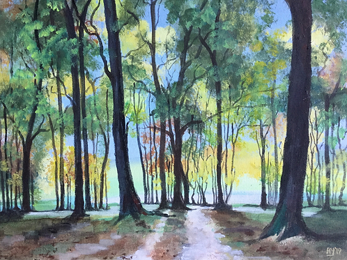 Late Summer Woodland by Anthony Young