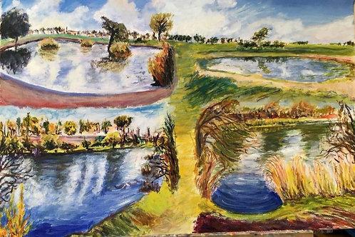 Ponds of Blackheath by Chris Ashworth