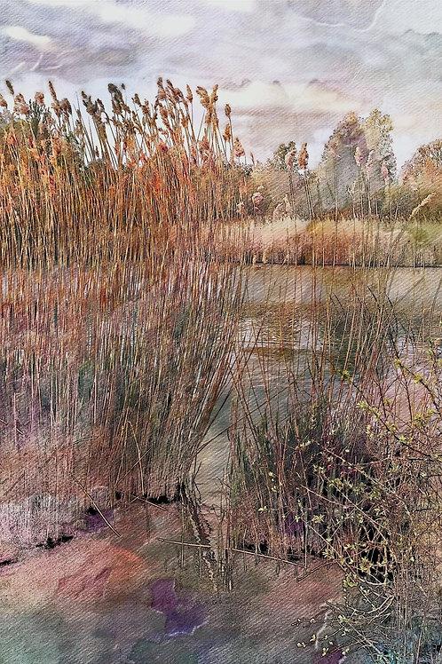Autumn in Kidbrooke by John Watts