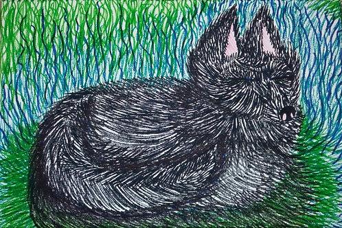 Black Fox by Charlotte Ashcroft